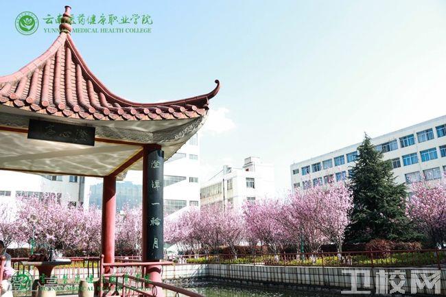 云南医药健康职业学院-澄心亭