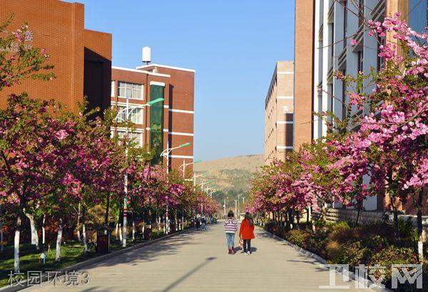云南经济管理学院医学院-环境4