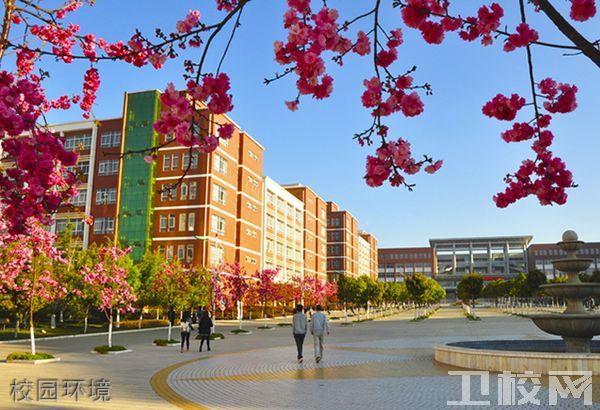 云南经济管理学院医学院-环境1