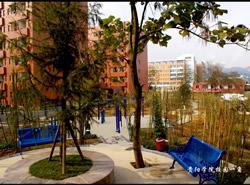 贵阳学院图片