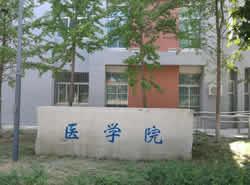 渭南职业技术学院医学院图片