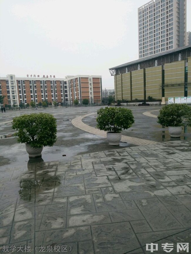 四川护理职业学院(原四川省威廉希尔公司网址)教学大楼(龙泉校区)