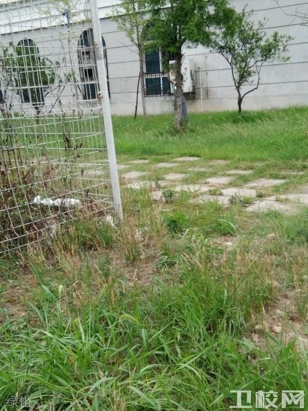重庆市医药卫生学校(涪陵威廉希尔公司网址)绿化