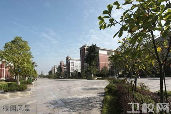 重庆医科大学护理学院校园风景