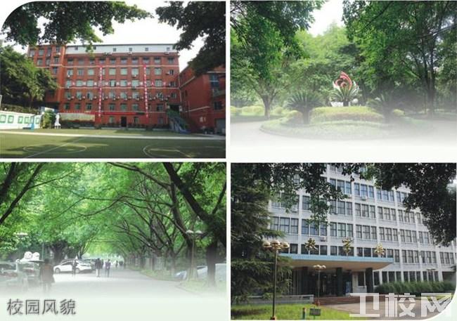 重庆知行卫生学校校园风貌
