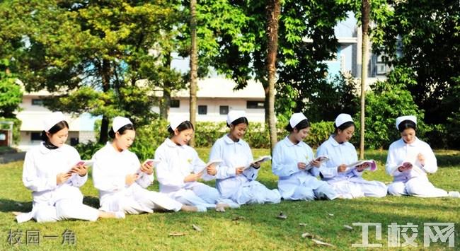 重庆知行卫生学校环境:校园一角