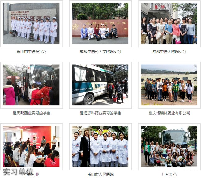 乐山市医药科技学校(成都校区)实习单位
