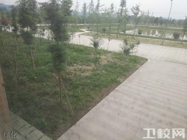 乐山市医药科技学校(成都校区)绿化