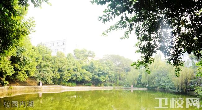 成都华大医药卫生学校校园内湖