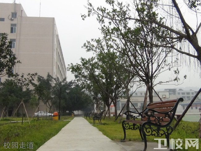 成都中医药大学附属医院针灸学校龙泉校区校园走道