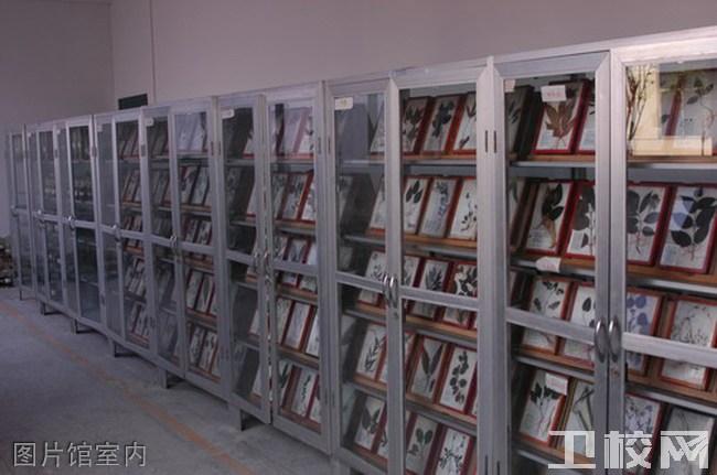 成都中医药大学附属医院针灸学校龙泉校区图片馆室内