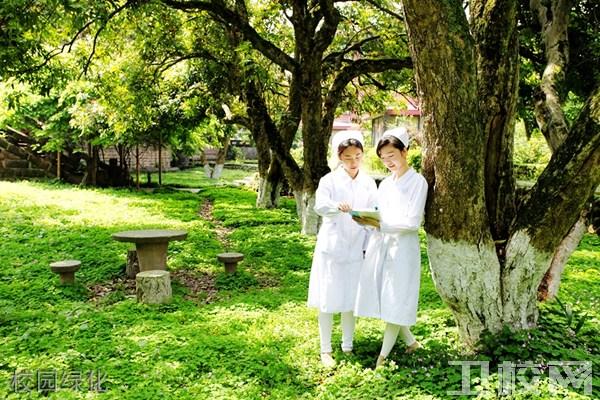 乐山市医药科技学校校园绿化