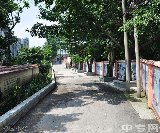 重庆市卫生技工学校-校园小径