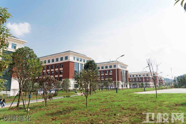 遵义医科大学医学与科技学院校园绿化