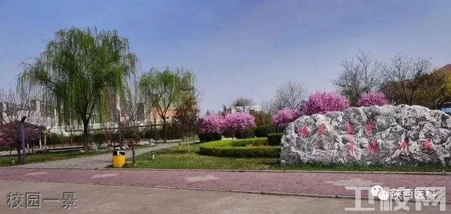陕西医科学校校园一景