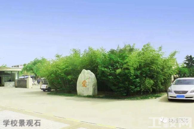 陕西医科学校学校景观石