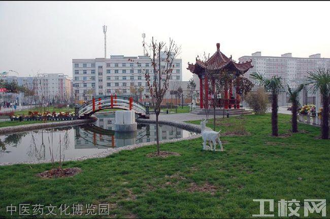 陕西中医药大学中医药文化博览园