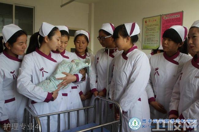 西安医专护理专业招生护理专业4