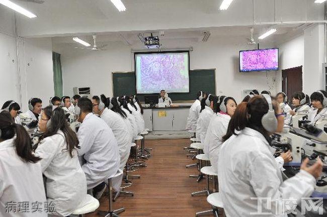 西安医学院病理实验