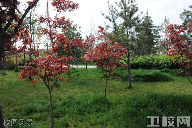 西安医学院校园风景
